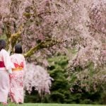 Sakura Days Japan Fair Vancouver 2019