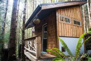 Live Tiny In This Rustic Cabin Tucked Away In The Woods