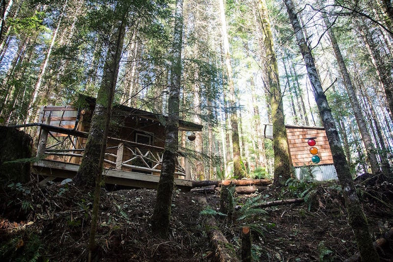 Tiny House on Vancouver Island