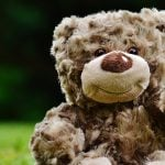 Teddy Bear Picnic Coquitlam 2019