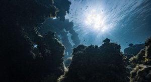 B.C. Underwater Volcano