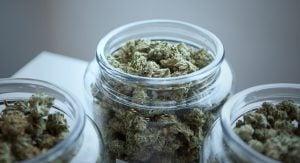 British Columbia Cannabis