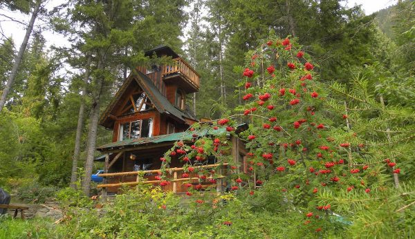 treehouse in bc