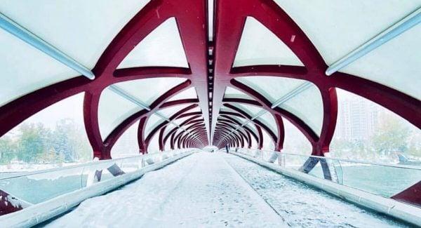 Snowing Calgary