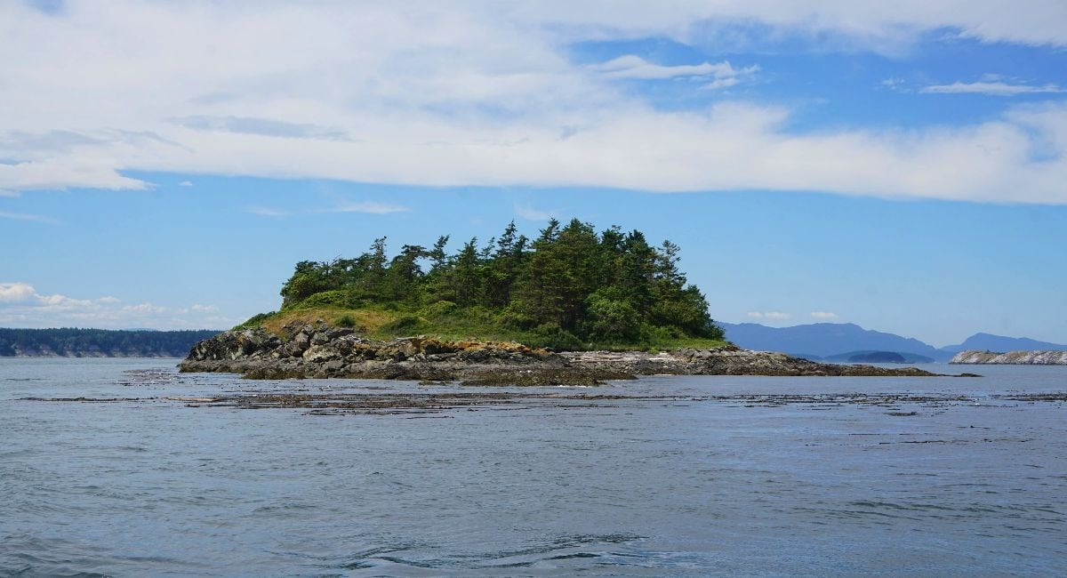 Halibut Island BC Private Islands
