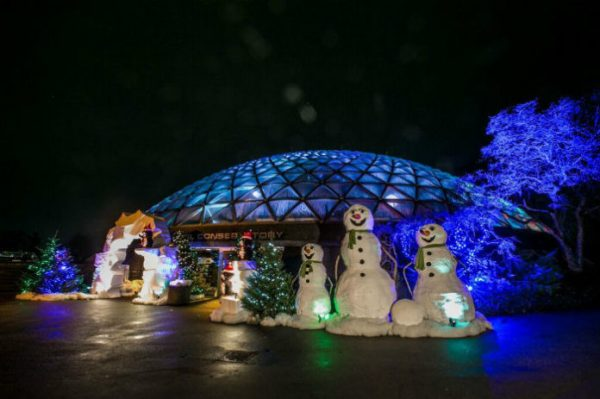 Bloedel Christmas Holiday Heights 2019