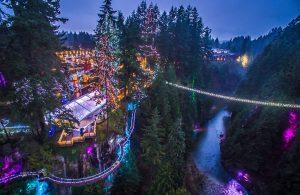Capilano Suspension Bridge Christmas - Canyon Lights