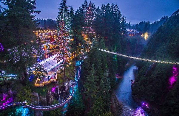 Capilano Suspension Bridge Christmas - Canyon Lights