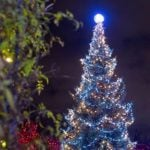 VanDusen Christmas Festival of Lights 2019