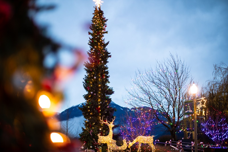 Harrison Hot Springs Lights By The Lake Christmas 2019