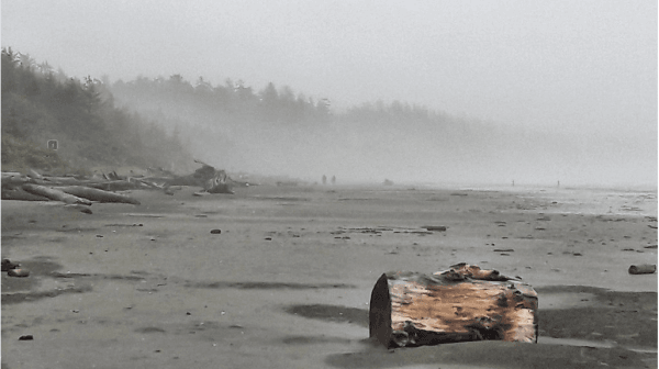 Rain storm on Vancouver Island