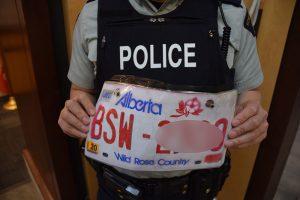 Alberta license plate fake