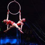 Royal Canadian Circus 2020