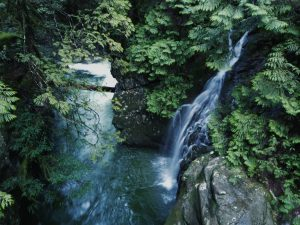 hikes near vancouver