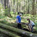 20 Years of Archaeology in the Seymour Valley 2020
