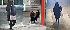 RCMP Need Help Finding Suspect Who Tripped 84-Year-Old Burnaby Woman (VIDEO)