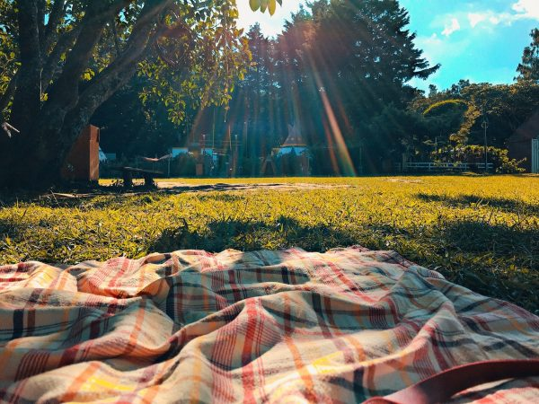 metro vancouver parks picnic