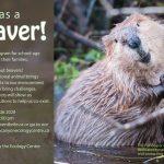 Busy as a Beaver Virtual Workshop 2020