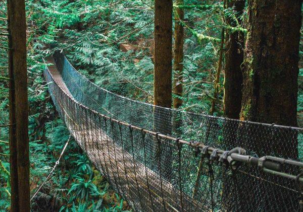 loss creek provincial park