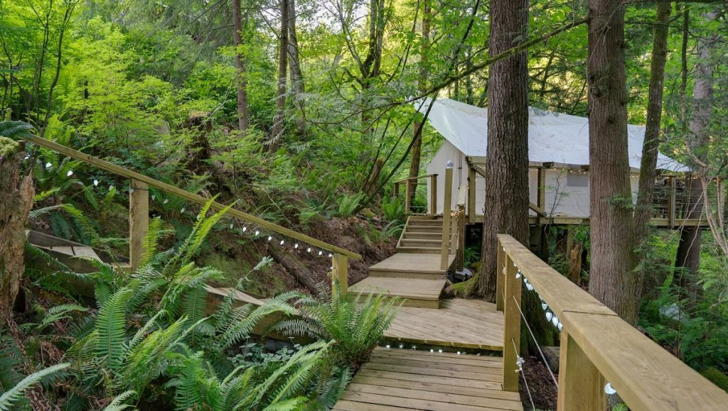 golden ears glamping