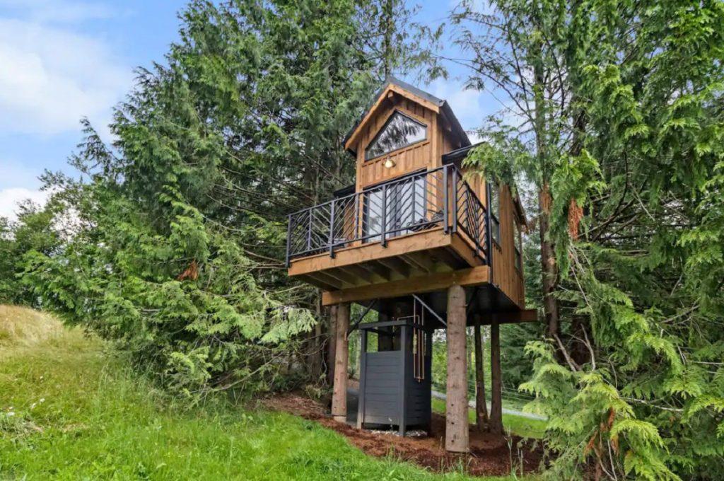 the birdhouse