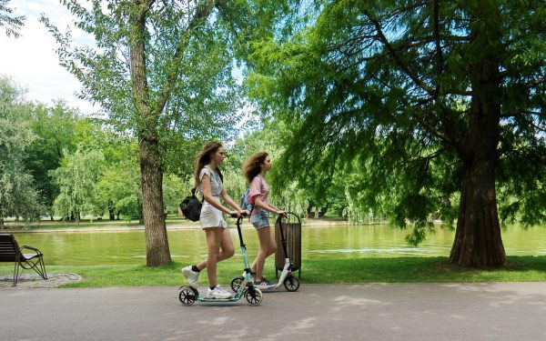 e-scooter electric scooters