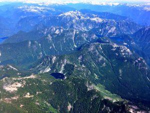 inecone Burke Provincial Park