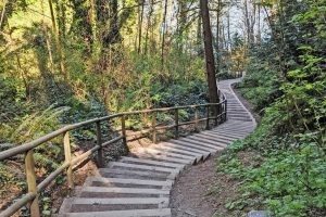 stair workout in metro Vancouver