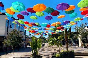 downtown langley umbrella art