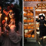 25 Fun Things To Do In And Around Vancouver This Weekend (Oct 15-17)